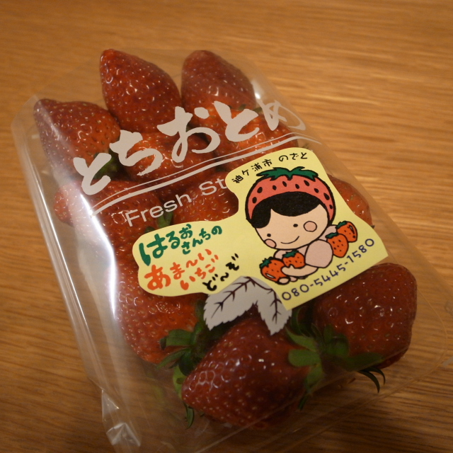 Ischigo1